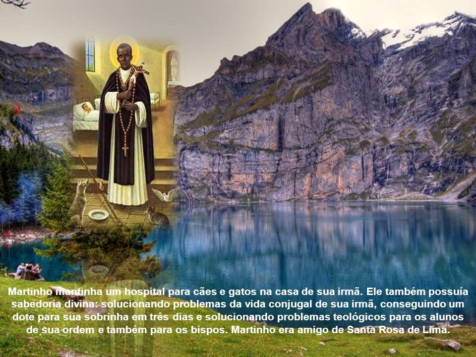 Martinho tinha um grande desejo de viajar por outros países e se tornar um mártir.