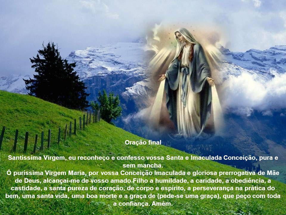 1º dia - Primeira aparição Contemplemos a Virgem Imaculada em sua primeira aparição a Santa Catarina Labouré. A piedosa noviça, guiada por seu Anjo da