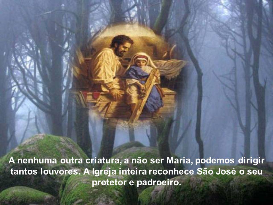 Assim o expressam as belíssimas Ladainhas de São José aprovadas pela Igreja, que resumem todas as prerrogativas; São José, ilustre descendente de Davi, luz dos patriarcas, esposo da Mãe de Deus...