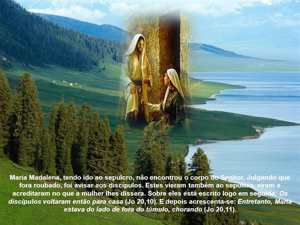 Maria Madalena, tendo ido ao sepulcro, não encontrou o corpo do Senhor.