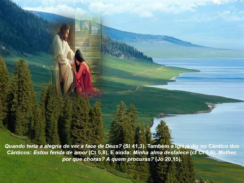 Quando teria a alegria de ver a face de Deus.(Sl 41,3).