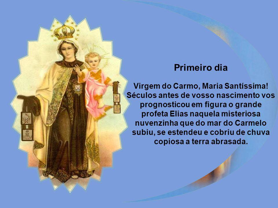Rainha excelsa e Mãe terna do Carmelo, refúgio de todos os mortais! Aqui tendes aos vossos pés uma pobre alma que em vós confia. Oração a Nossa Senhor