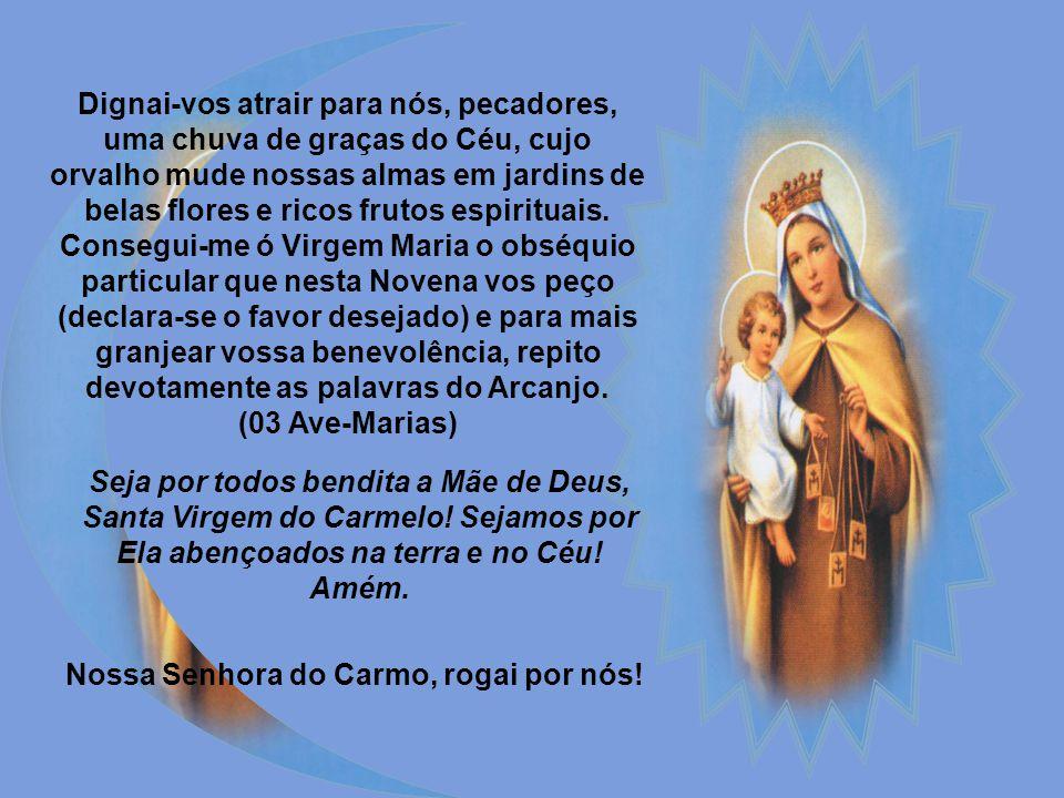 Primeiro dia Virgem do Carmo, Maria Santíssima! Séculos antes de vosso nascimento vos prognosticou em figura o grande profeta Elias naquela misteriosa