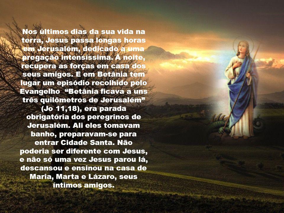 Marta diante da promessa da Ressurreição declara sua fé: Sim, Senhor, eu creio que tu és o Cristo, o Filho de Deus que vem ao mundo. E vai anunciar à