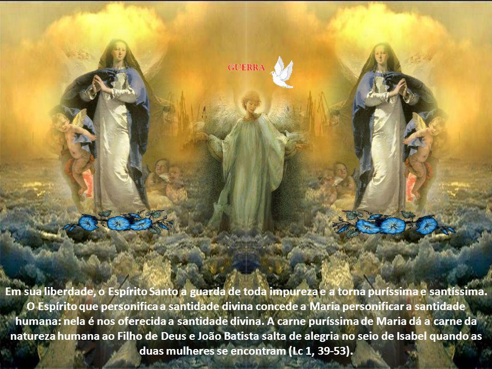 Em sua liberdade, o Espírito Santo a guarda de toda impureza e a torna puríssima e santíssima.