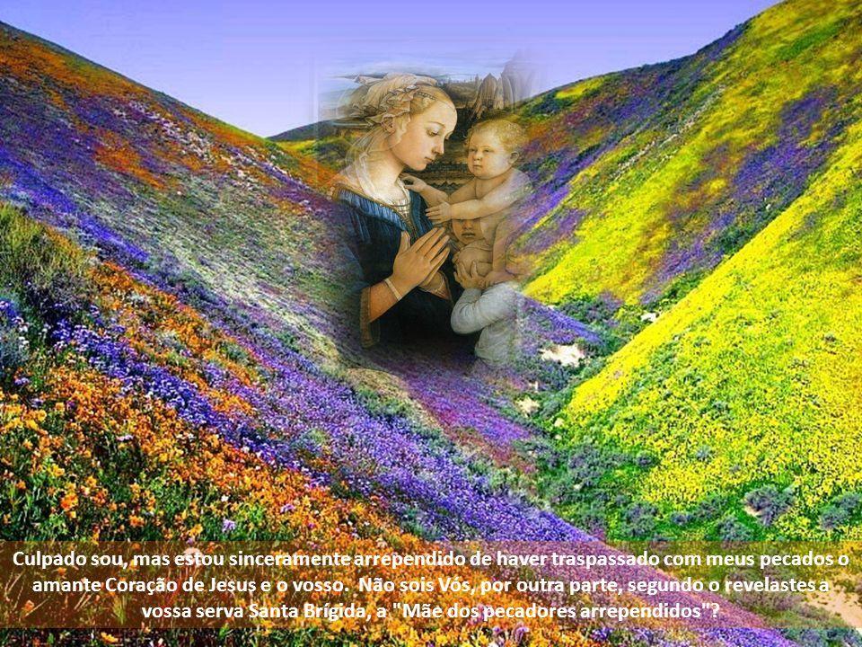Oh! Mãe terna e amável, verdadeira Mãe de Misericórdia!, Que nestes últimos tempos vos haveis chamado, vós mesma,