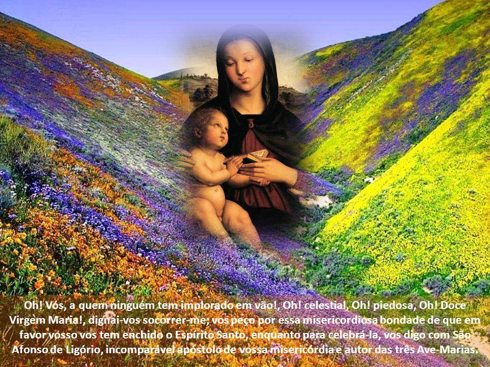 Perdoai-me, pois, minhas passadas ingratidões e, tendo só em conta vossa misericordiosa bondade e a glória que dela resultará para Deus e para Vós mes