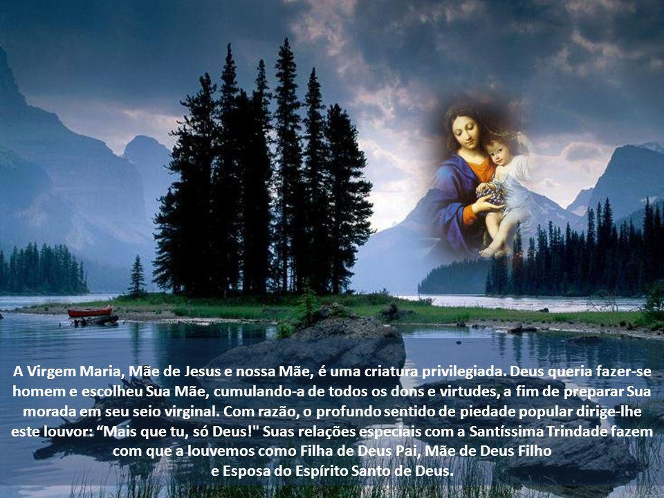 A Virgem Maria, Mãe de Jesus e nossa Mãe, é uma criatura privilegiada.