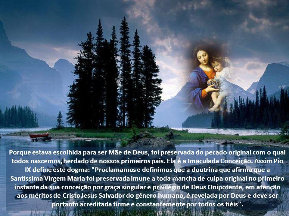 Maria Santíssima é verdadeiramente Mãe de Deus, porque gerou e deu à luz Cristo Jesus, que é verdadeiro Deus e verdadeiro Homem. Quando Nestório negou