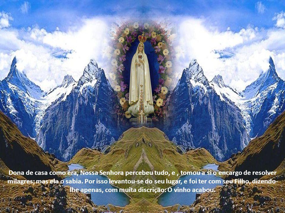 Dona de casa como era, Nossa Senhora percebeu tudo, e, tomou a si o encargo de resolver milagres; mas ela o sabia.