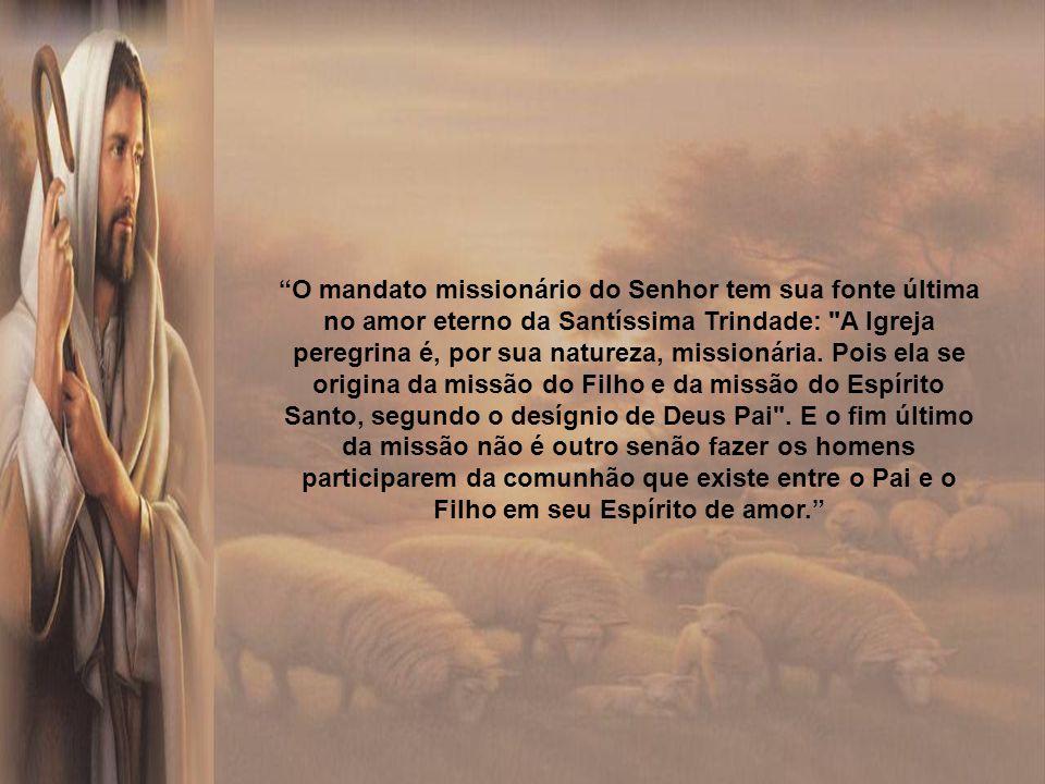 A fidelidade dos batizados é condição primordial para o anúncio do Evangelho e para a missão da Igreja no mundo. Para manifestar diante dos homens sua