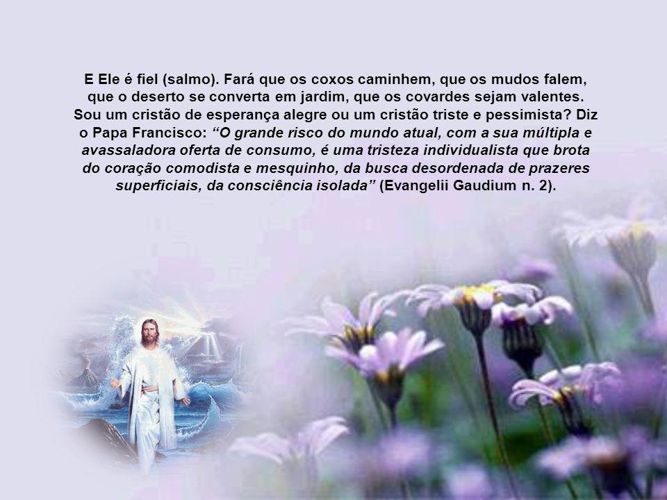 Este Cristo Salvador que chega no Natal nos encherá de sua alegria, pois Ele é a alegre notícia do Pai, e por isso o deserto e o descampado (do nosso