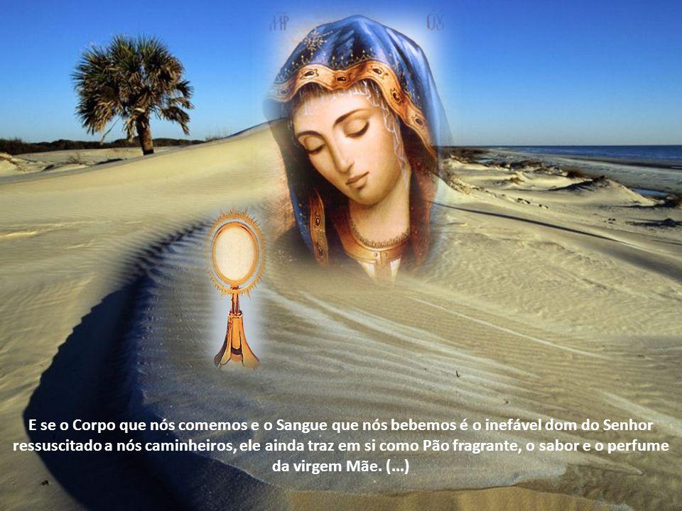 Na origem da Eucaristia está, portanto, a vida virginal e materna de Maria, sua transbordante experiência de Deus, seu caminho de fé e de amor, que, p