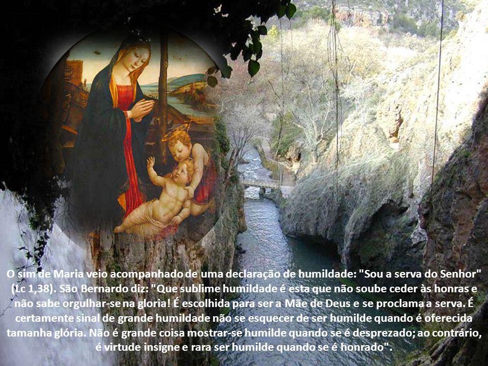 O mistério e a missão de Maria, porém, só têm sentido no mistério e na missão de seu Filho. Jesus, autor da Graça, toma carne daquela que ele plenific