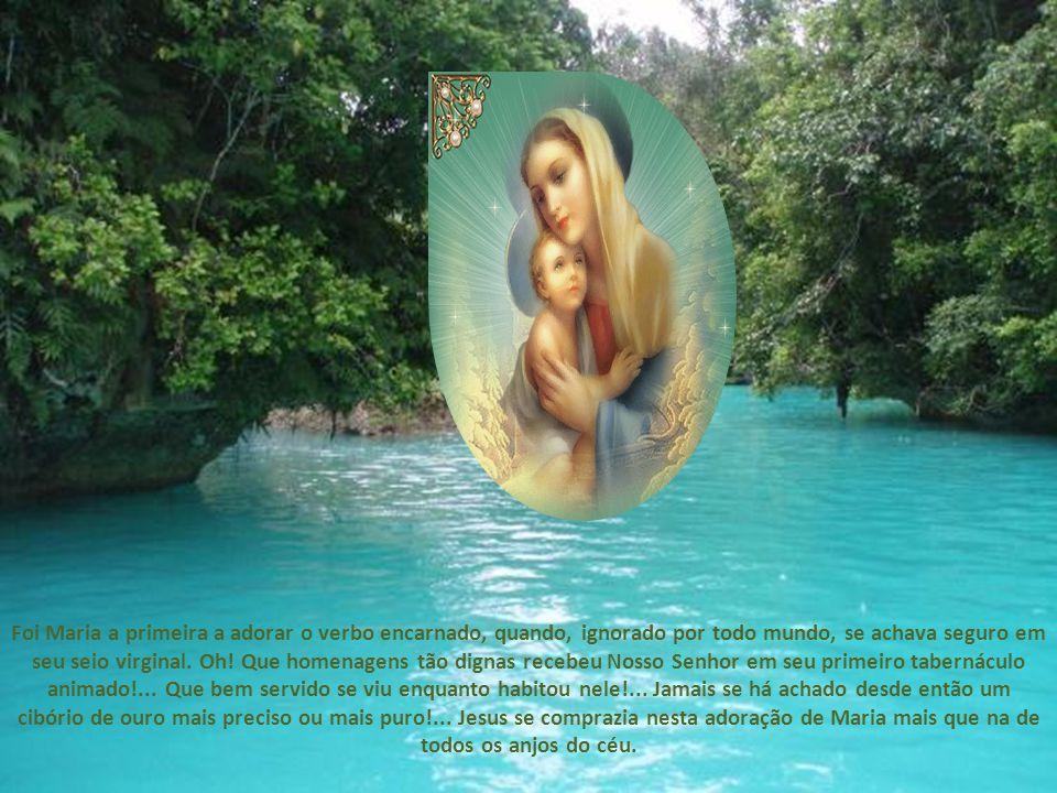 Os apóstolos, absorvidos por sua obrigação de velar pela salvação das almas, não podiam consagrar muito tempo à adoração eucarística; se bem que seu amor os houvera fixado ao pé do tabernáculo, sua missão de apóstolos os reclamava em outro lugar; e quanto aos cristãos, ao modo de jovens ingênuos envoltos ainda em fraldas, necessitavam de uma mãe que se ocupasse de sua educação, de um modelo que pudessem copiar, e foi com este duplo fim que Jesus Cristo lhes deixou sua Santíssima Mãe.