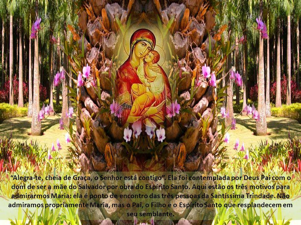 Quem não conhece, ou até já recebeu em casa, a Mãe Peregrina.