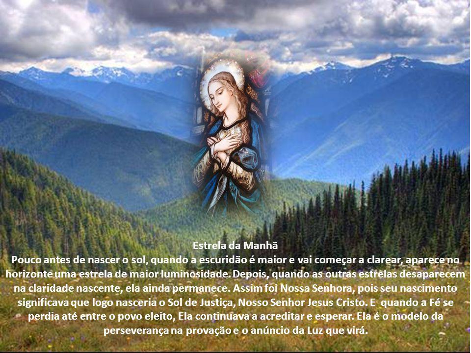 Porta do Céu Nossa Senhora é invocada desse modo, pois foi por meio dela que Jesus Cristo veio à Terra, e é por Ela que nos vêm todas as graças, as qu