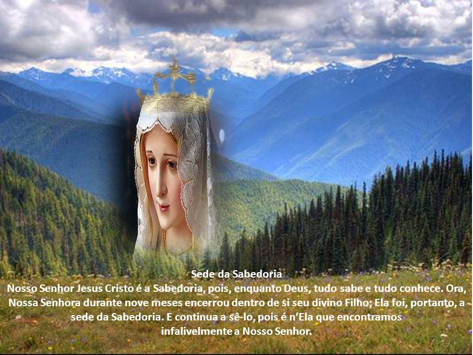 Sede da Sabedoria Nosso Senhor Jesus Cristo é a Sabedoria, pois, enquanto Deus, tudo sabe e tudo conhece.