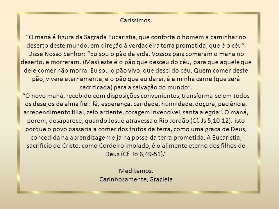 Caríssimos, O maná é figura da Sagrada Eucaristia, que conforta o homem a caminhar no deserto deste mundo, em direção à verdadeira terra prometida, que é o céu.