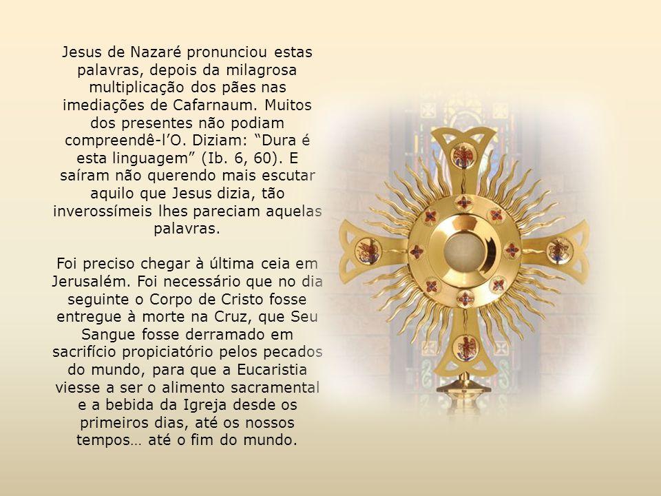 Jesus de Nazaré pronunciou estas palavras, depois da milagrosa multiplicação dos pães nas imediações de Cafarnaum.