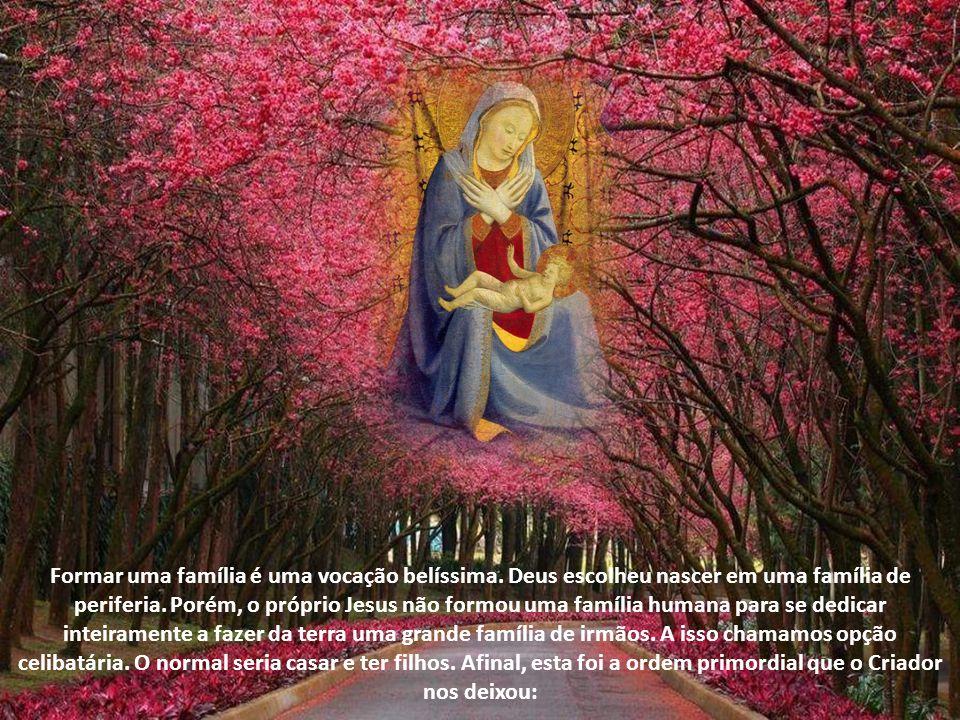 A sétima das doze invocações de Maria como Rainha saúda a Mãe de Deus como Rainha das Virgens, em latim Regina Virginum.