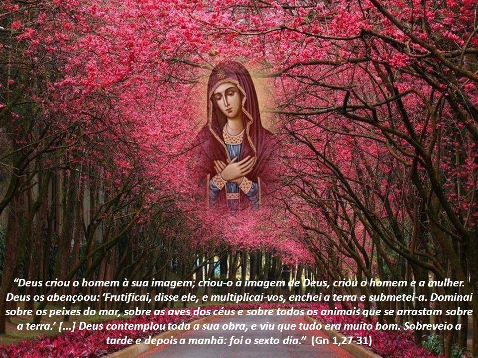 Deus criou o homem à sua imagem; criou-o à imagem de Deus, criou o homem e a mulher.