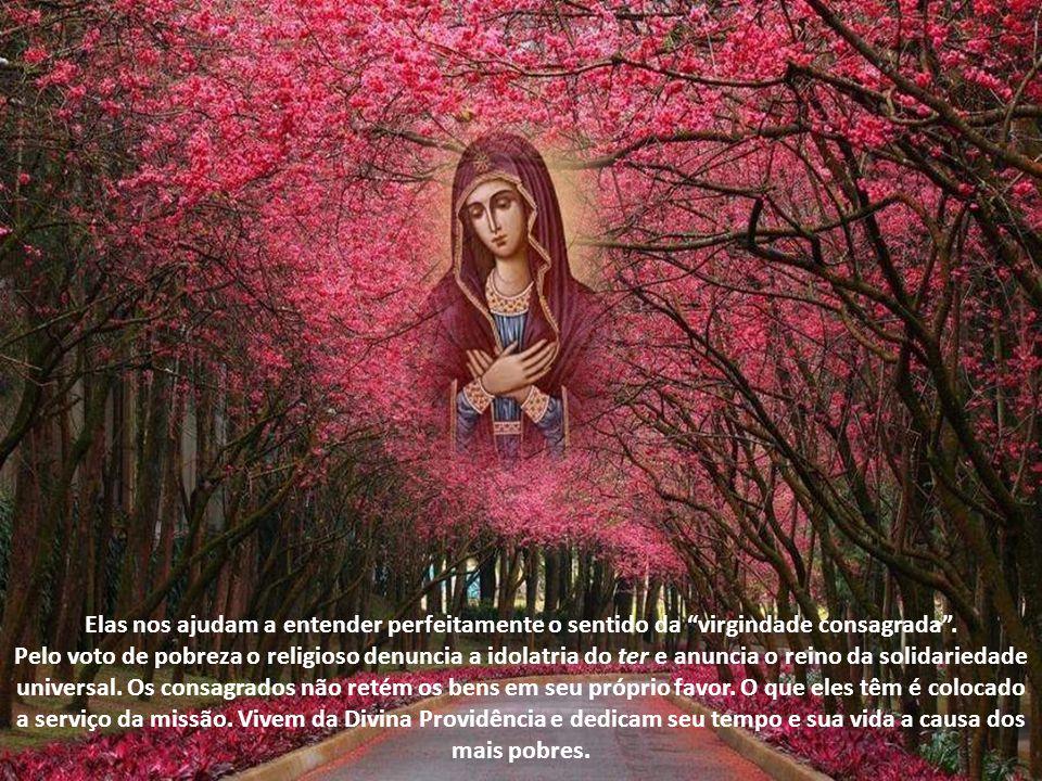 Pelo voto de castidade, os religiosos e religiosas, denunciam a idolatria do prazer e anunciam o reino da fraternidade universal.
