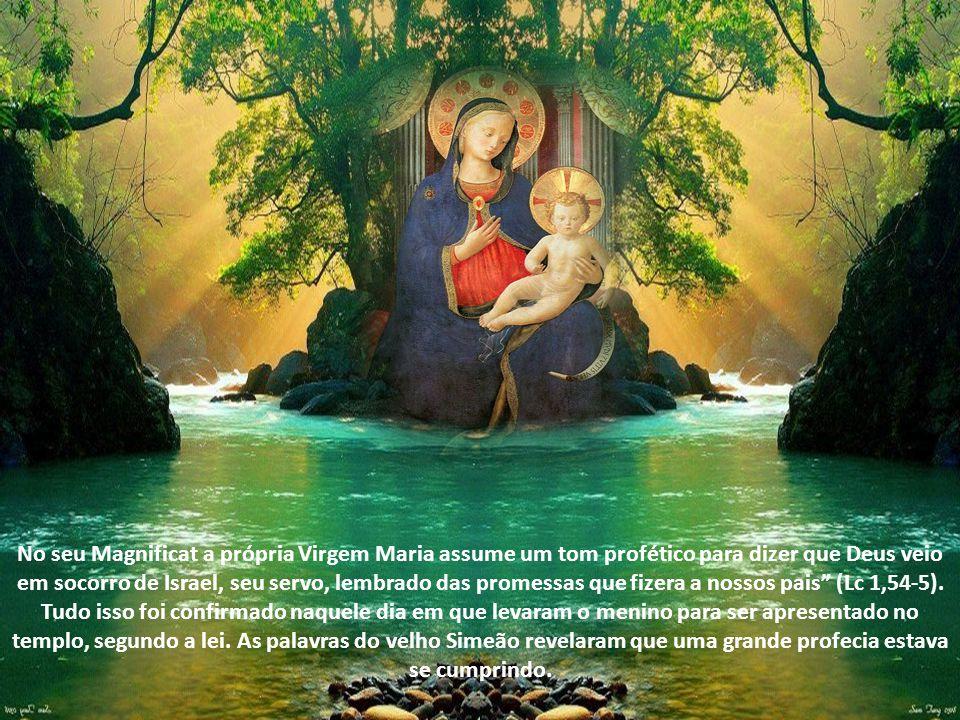 Poderíamos dizer que naquele momento A profecia se fez carne e habitou entre nós (Jo 1,14).O sim de Maria permitiu a encarnação de todas as profecias.