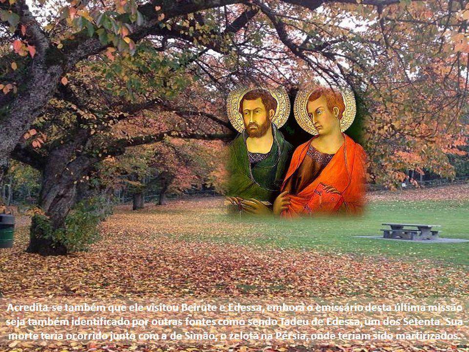 Celebramos na alegria da fé os apóstolos São Simão e São Judas Tadeu. Os apóstolos foram colunas e fundamento da verdade do Reino. A tradição conta qu