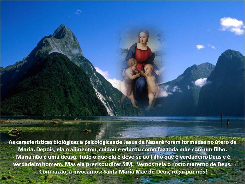 Ela não gerou a natureza divina, mas o seu Filho não é um, e outro é o Filho eterno do Pai. Ela concebeu na carne o mesmo Filho Unigênito do Pai. A pa