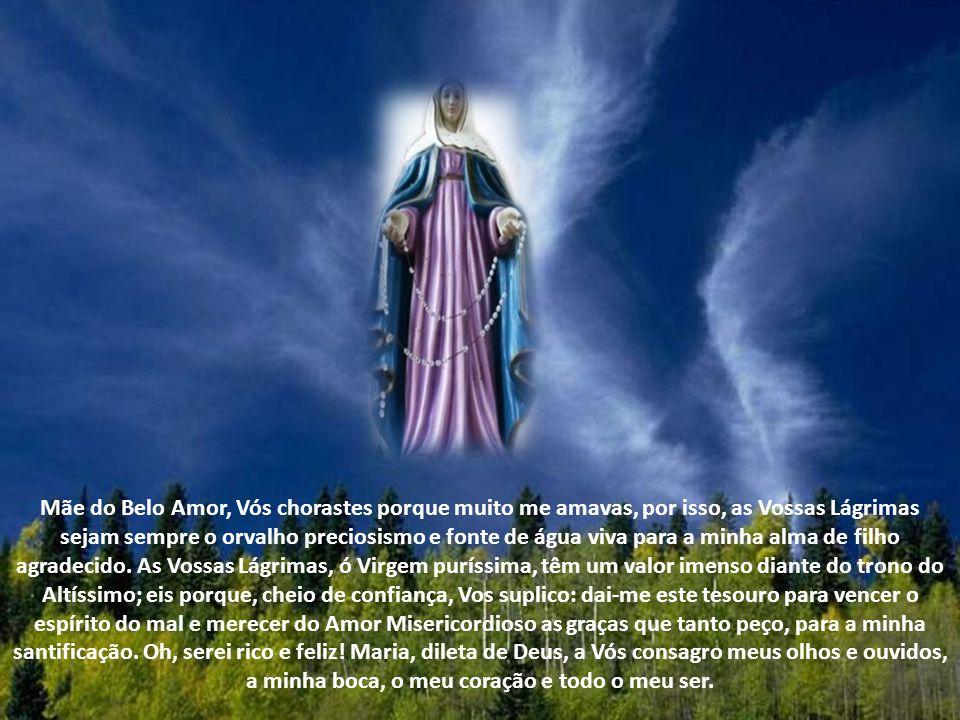 Meu Jesus, ouvi os nossos rogos pelas Lágrimas de Vossa Mãe Santíssima.