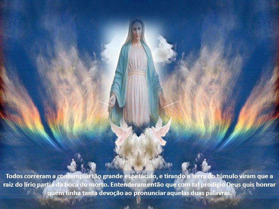 No entanto, o mestre não foi capaz de lhe ensinar nada além de duas palavras, Ave Maria, as quais ele memorizou com tal amor que as repetia a todo instante, onde quer que estivesse, seja o que for que estivesse fazendo.