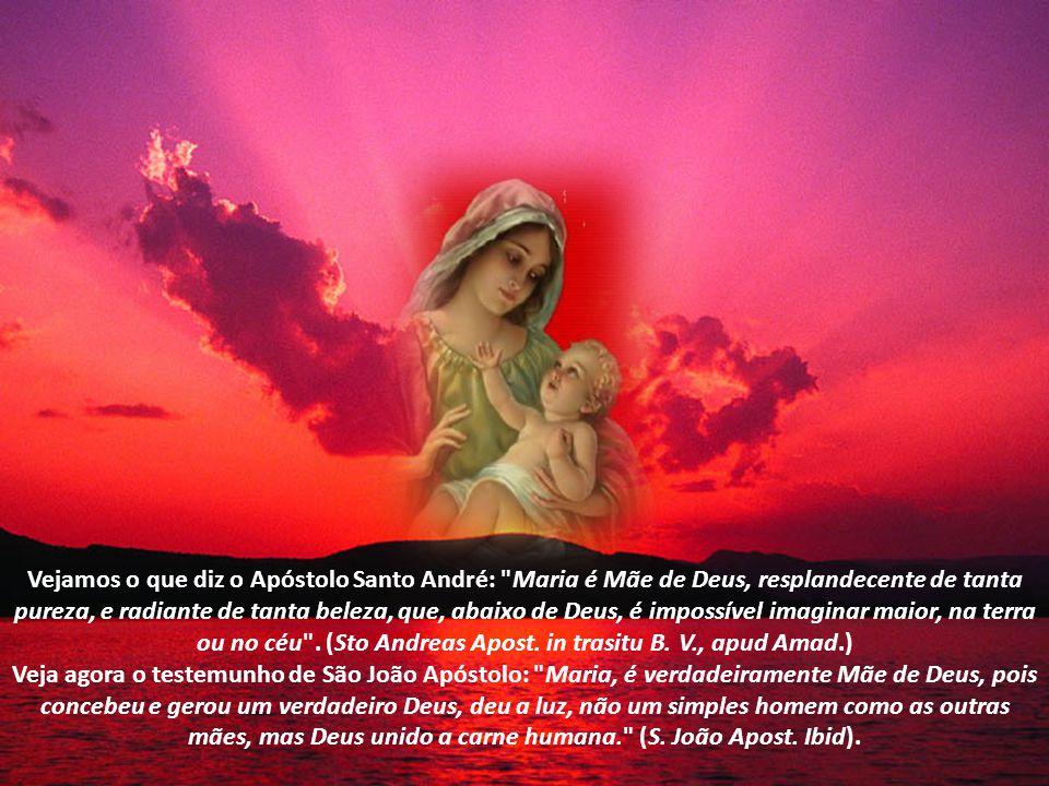 A Doutrina dos Santos Padres Será que os Apóstolos de Cristo concordavam com a Maternidade Divina de Nossa Senhora.