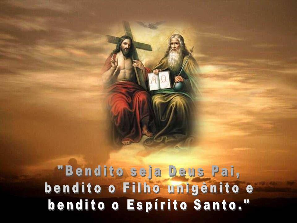 Senhor, Pai santo, Deus eterno e todo-poderoso, com vosso Filho único e o Espírito Santo sois um só Deus e um só Senhor. Não uma única pessoa, mas trê
