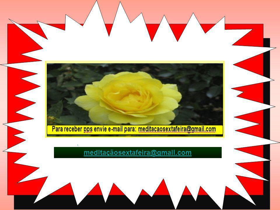 : meditaçãosextafeira@gmail.com