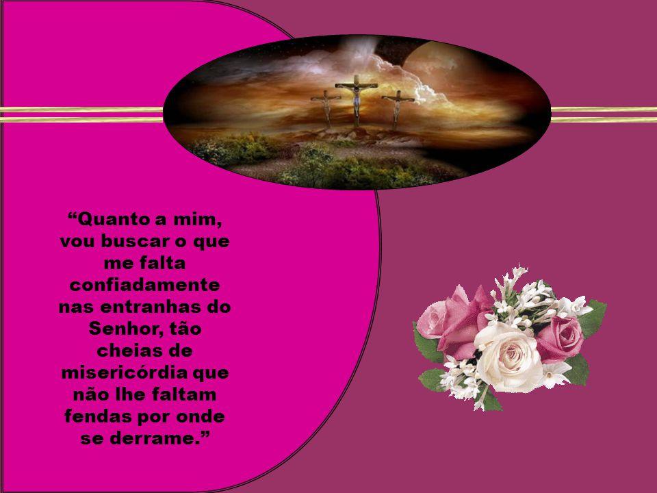 Quanto a mim, vou buscar o que me falta confiadamente nas entranhas do Senhor, tão cheias de misericórdia que não lhe faltam fendas por onde se derrame.
