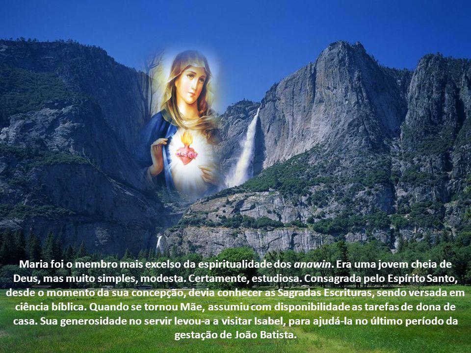 Texto – Cardeal D.