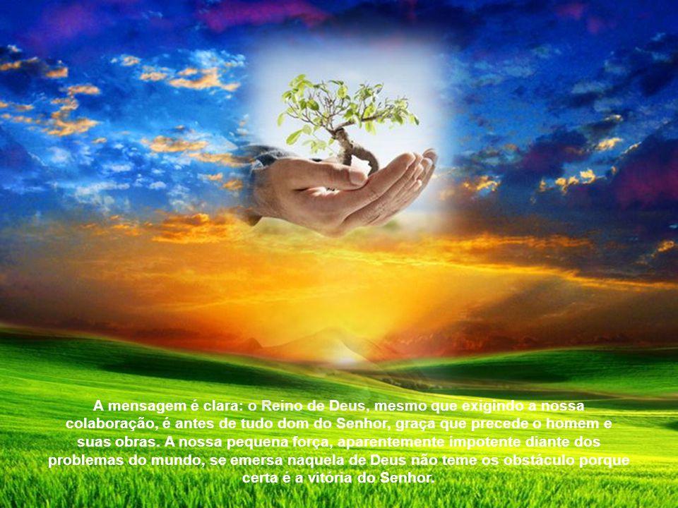 A imagem da semente é particularmente cara a Jesus, porque expressa claramente o mistério do Reino de Deus. Nas duas parábolas isso representa um