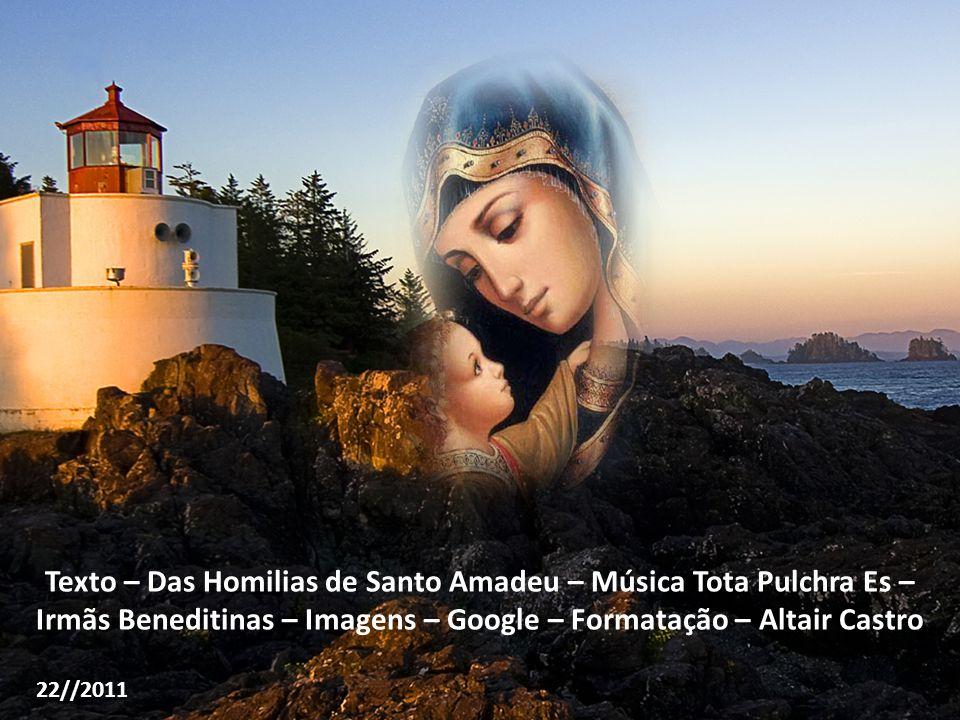 Texto – Das Homilias de Santo Amadeu – Música Tota Pulchra Es – Irmãs Beneditinas – Imagens – Google – Formatação – Altair Castro 22//2011