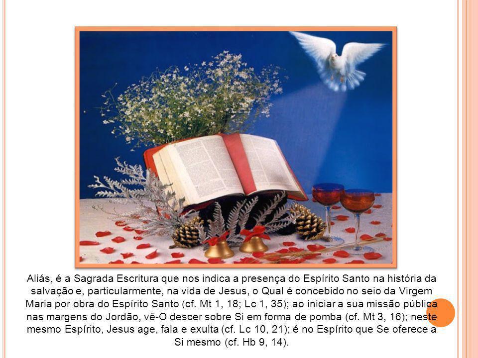 Aliás, é a Sagrada Escritura que nos indica a presença do Espírito Santo na história da salvação e, particularmente, na vida de Jesus, o Qual é concebido no seio da Virgem Maria por obra do Espírito Santo (cf.