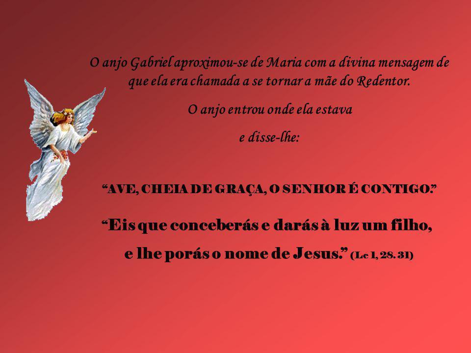Caríssimos, Neste mês de maio, mês especialmente dedicado a Maria, a mãe de Jesus, a mãe que Ele (Deus) escolheu antes de ter nascido, como nos diz Fu