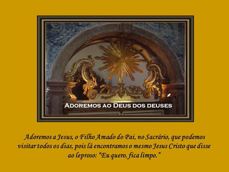 Se todos os filhos da Igreja – diz o Papa João Paulo I – fossem missionários incansáveis do Evangelho, brotaria uma nova floração de santidade e de renovação neste mundo sedento de amor e de verdade.