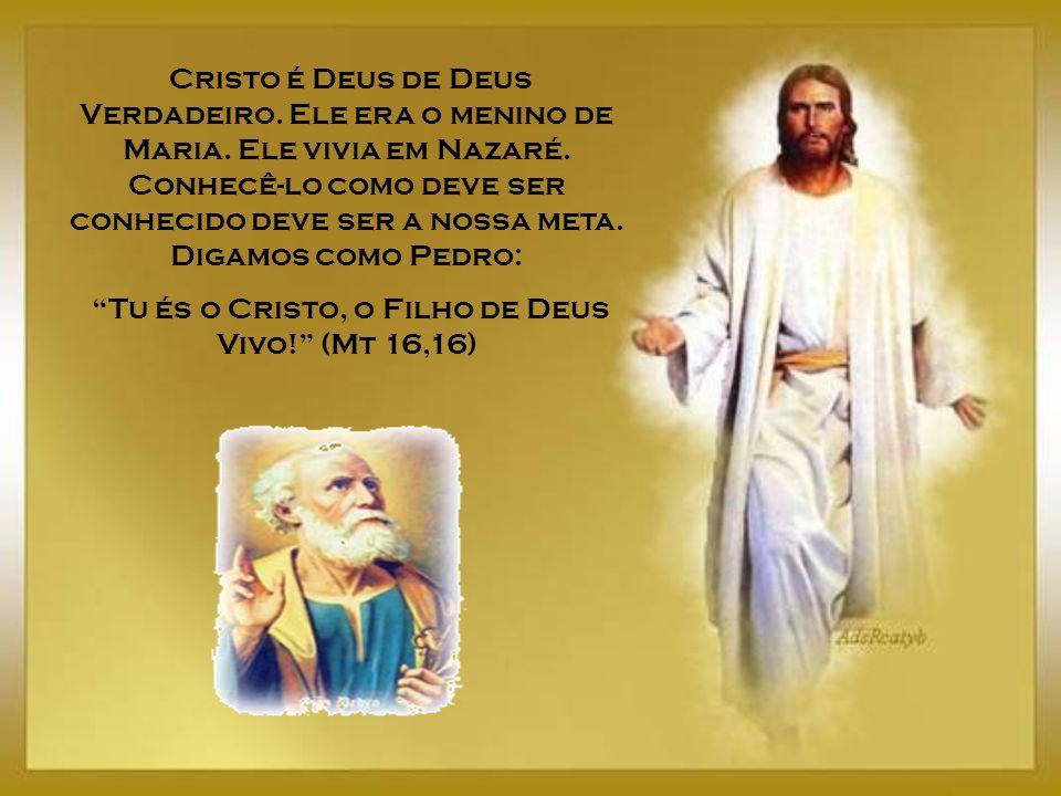Adoremos ao Deus dos deuses Adoremos a Jesus, o Filho Amado do Pai, no Sacrário, que podemos visitar todos os dias, pois lá encontramos o mesmo Jesus