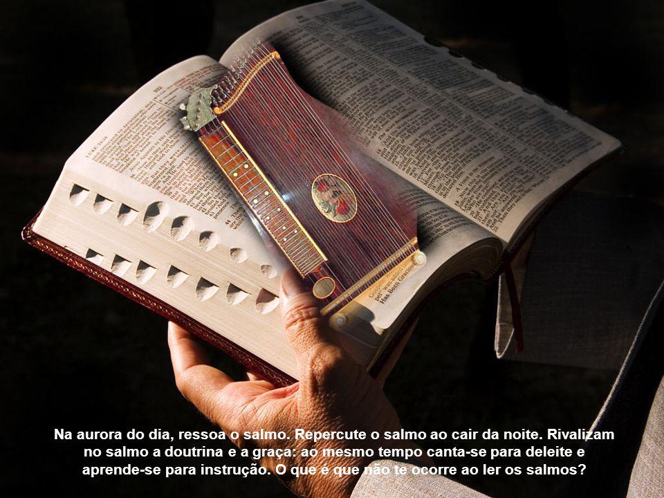 O salmo abranda a ira, desfaz a preocupação, consola na tristeza. Ele é a proteção noturna, o diurno ensinamento, um escudo no temor, uma festa na san