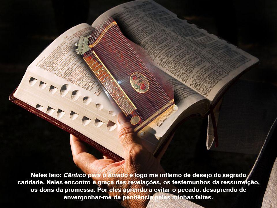 Neles leio: Cântico para o amado e logo me inflamo de desejo da sagrada caridade.