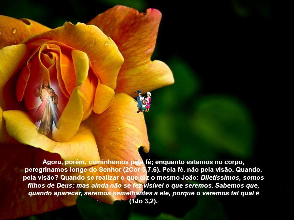 Que nos é indicado? O que é doado, ordenado, dado? Que nos alegremos no Senhor. Quem é que se alegra com aquilo que não vê? Acaso vemos o Senhor? Já o