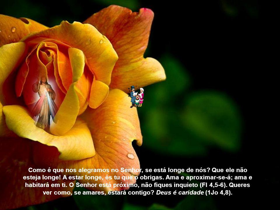 Agora, amamos na esperança. Por isso, alegra-se o justo no Senhor e logo em seguida, e nele espera, porque ainda não vê. Todavia, possuímos as primíci
