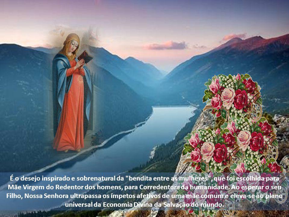 Anelos de milhares e milhares de gerações que suspiraram pela vinda do Salvador do mundo, desde Adão e Eva, e que se recolhem e concentram no Coração
