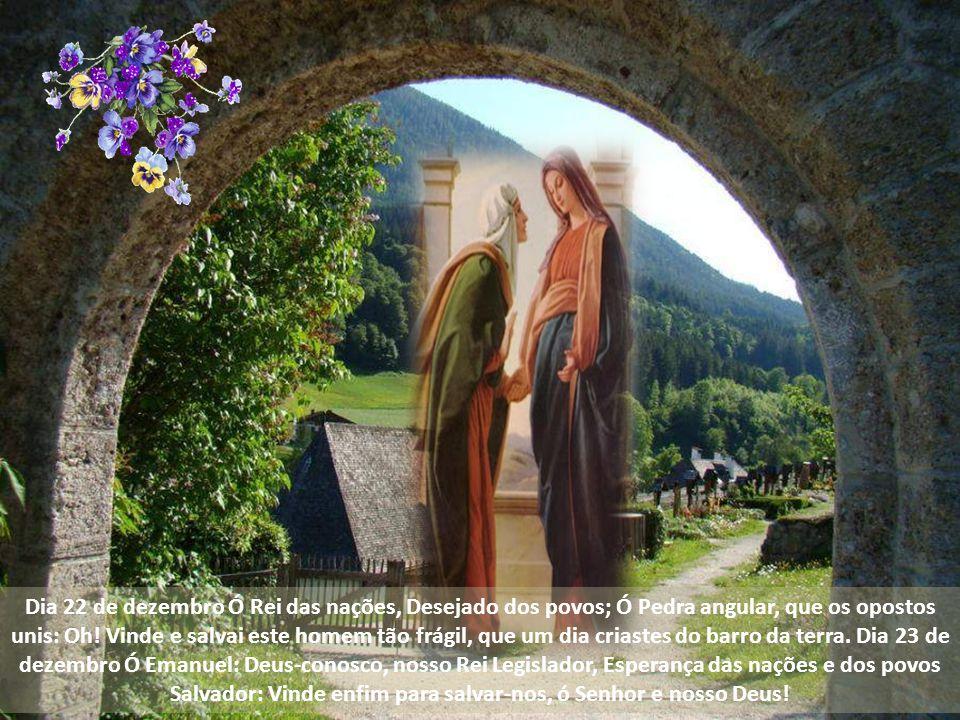 Dia 22 de dezembro Ó Rei das nações, Desejado dos povos; Ó Pedra angular, que os opostos unis: Oh.