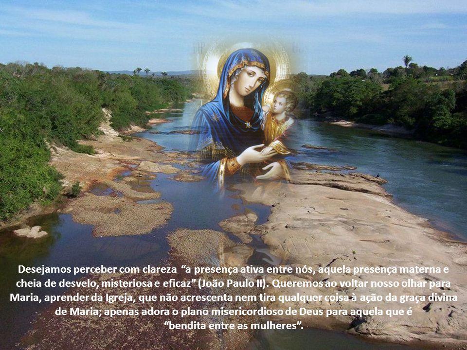Os fiéis ainda têm de trabalhar para vencer o pecado e crescer na santidade, por isso levantam os olhos para Maria (LG 65).